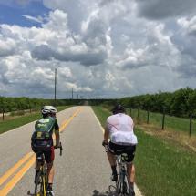 Quiet Polk County Roads