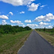 Small Roads that feel like bike trails
